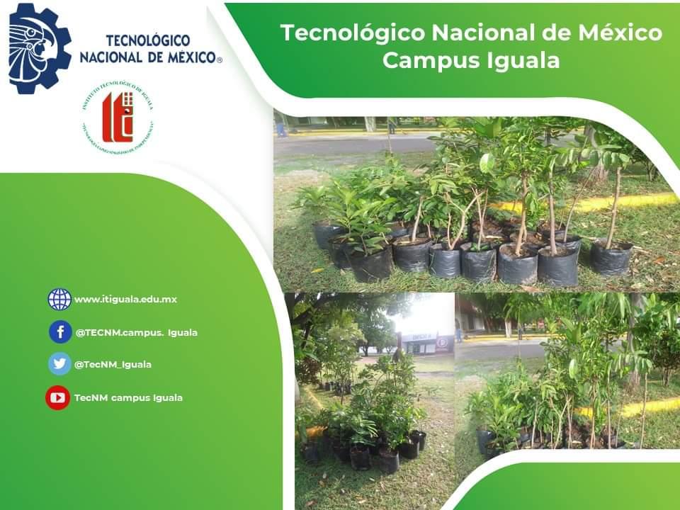Fuentes: TECNM Campus Iguala