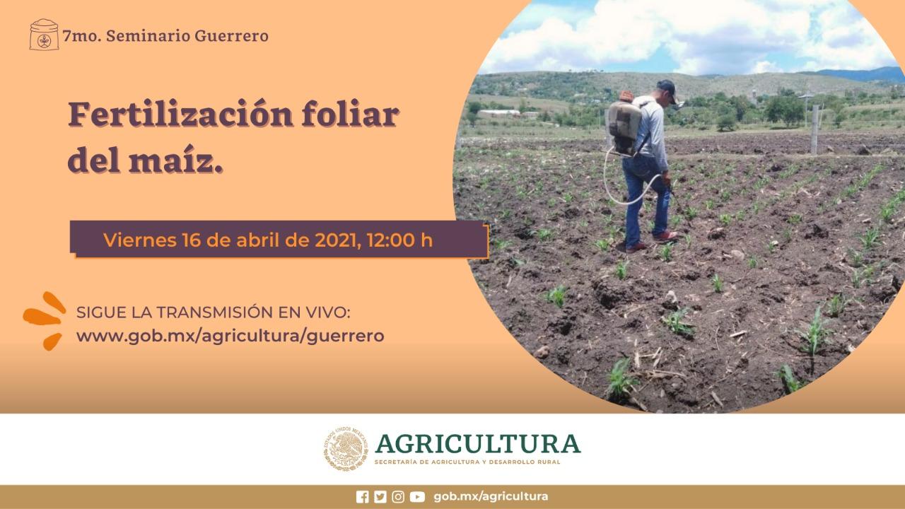 7.º Seminario de Fertilizantes foliar del maíz Guerrero